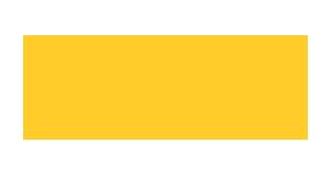 9X Tashan Logo